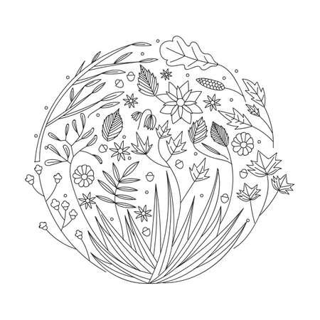 intricate floral design Imagens - 77564853