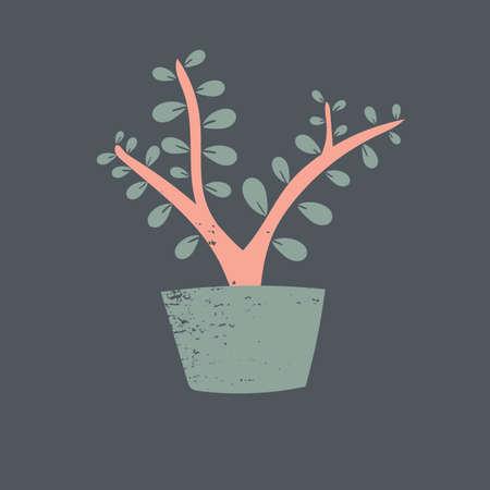 bonsai のプラント