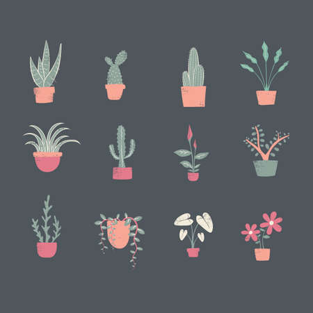 Collection of decorative plants Illustration
