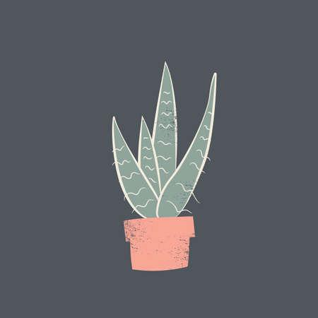 snake plant Иллюстрация