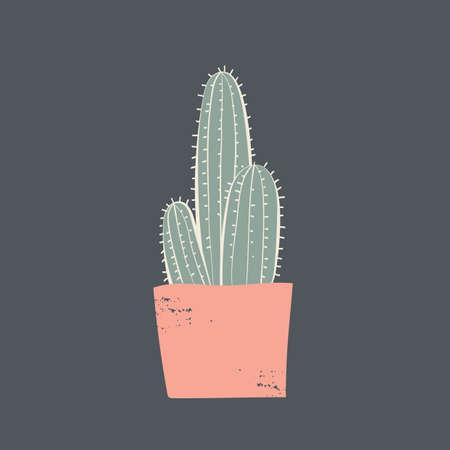 Kaktuspflanze Standard-Bild - 77328929