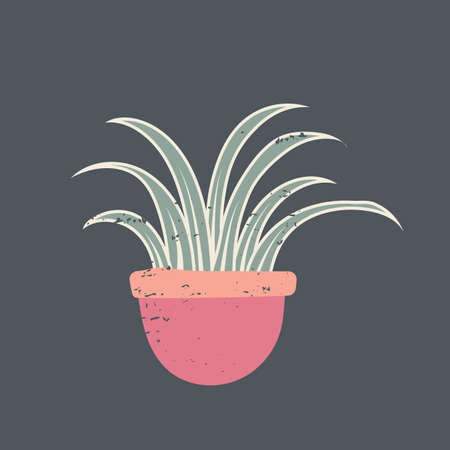 Grassy plant Иллюстрация
