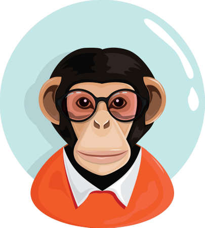 Monkey character Illustration
