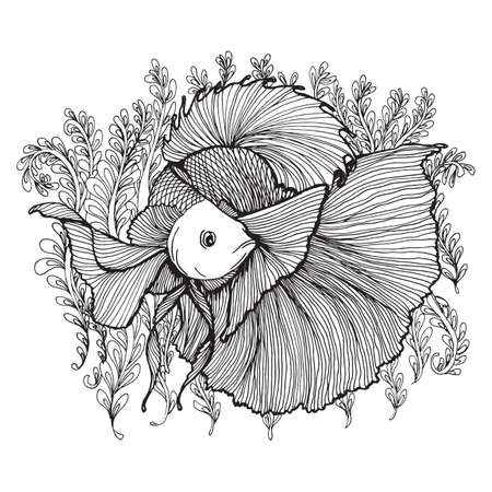 fighting fish: Betta fish design Illustration