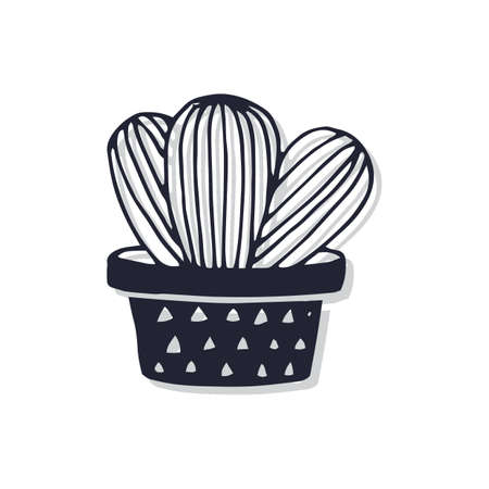 Potted succulent Illustration