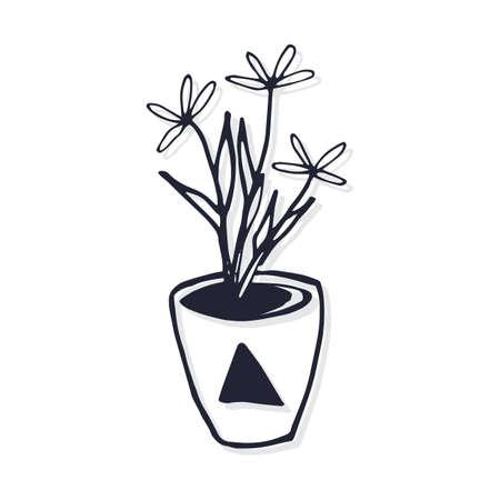 Topfpflanze Standard-Bild - 77253752
