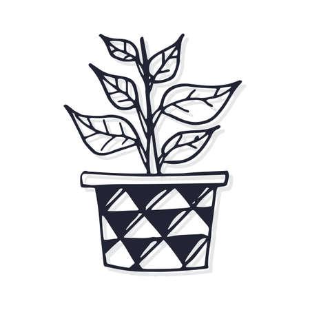 potted desert plant Ilustração