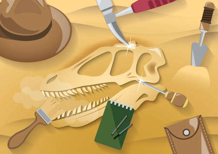 skeleton and archaeological tools