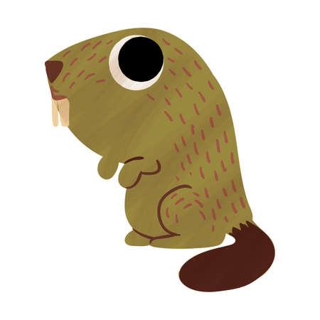 beaver Ilustração