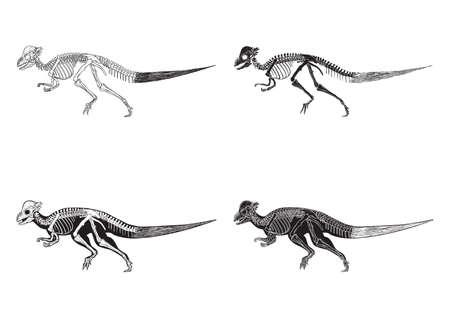 corythosaurus アイコンのセット  イラスト・ベクター素材