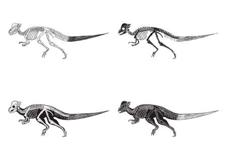set of corythosaurus icons