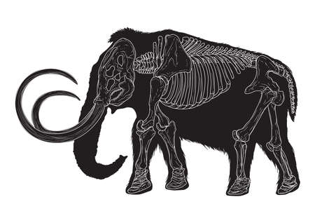 mammoet Stock Illustratie