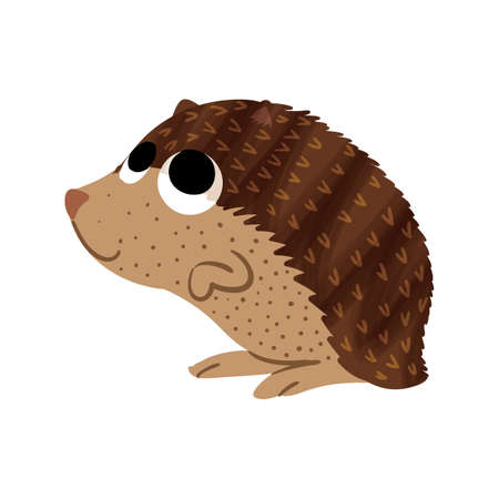 hedgehog Ilustrace