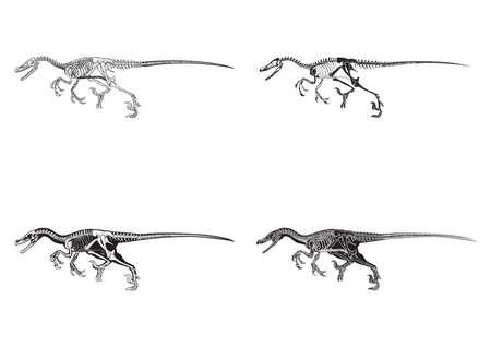 アロサウルスのアイコンのセット  イラスト・ベクター素材
