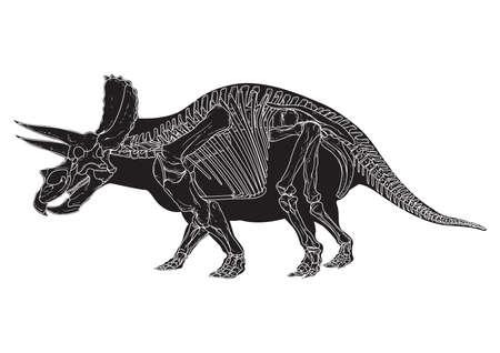 frill: triceratops Illustration
