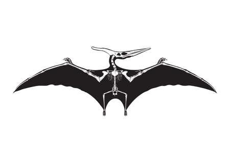 pteranodon: pteranodon