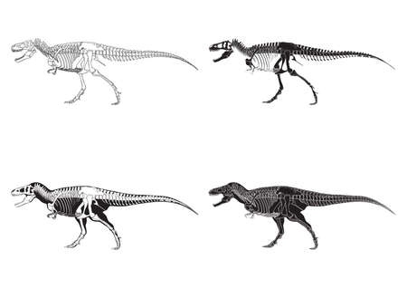 conjunto de iconos rex tyrannosaurus Ilustración de vector