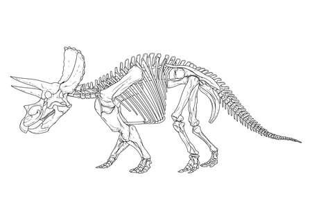 triceratops Ilustrace
