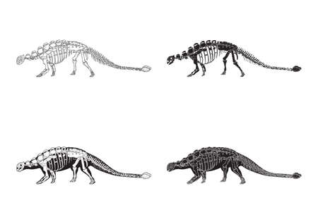 ankylosaurus 아이콘 세트