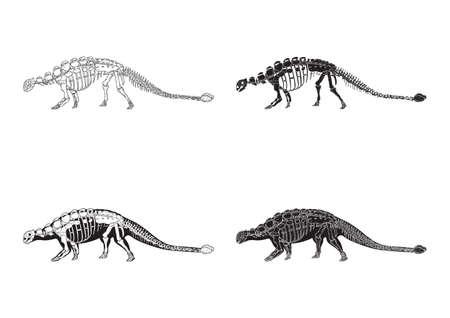 set of ankylosaurus icons