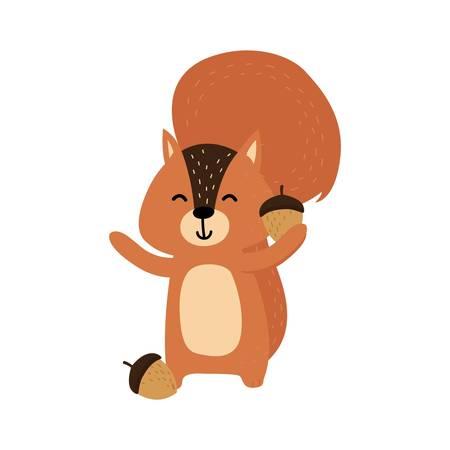 squirrel holding an acorn Illustration