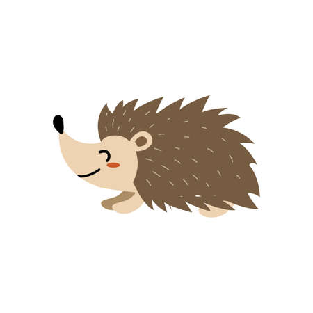 hedgehog Illustration