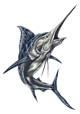 swordfish Illustration