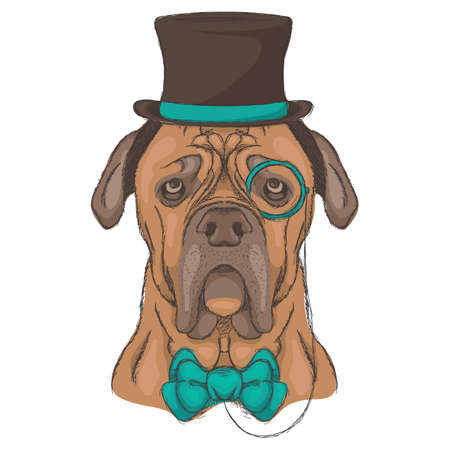 bulldog character