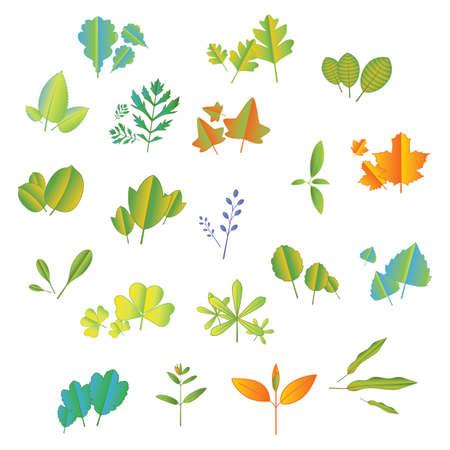 나뭇잎 아이콘 집합 일러스트