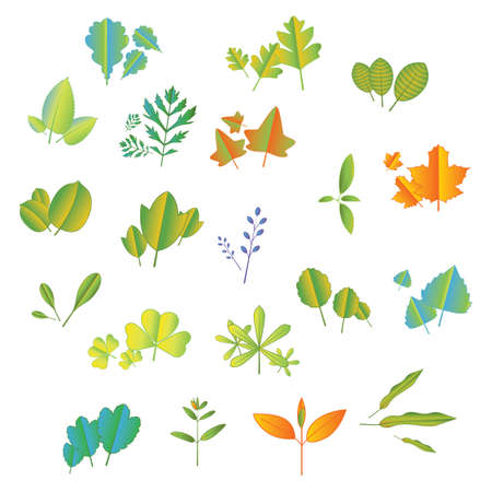 set of leaves icon
