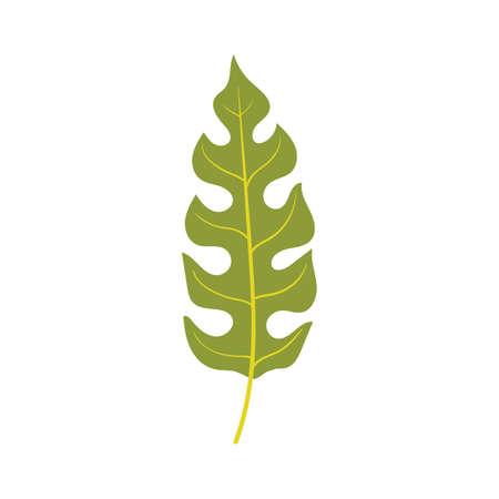 leaf icon