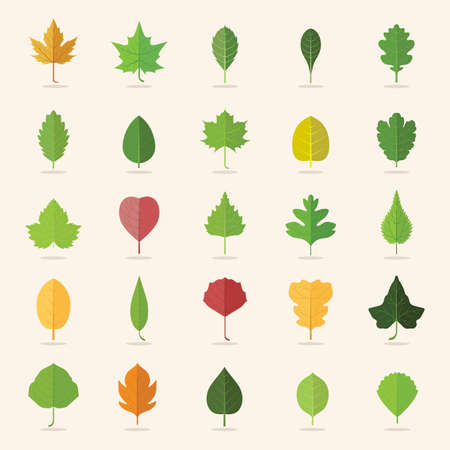 collection of leaf icons Illustration