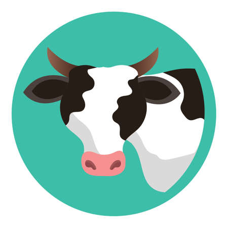 cow Imagens - 79157474