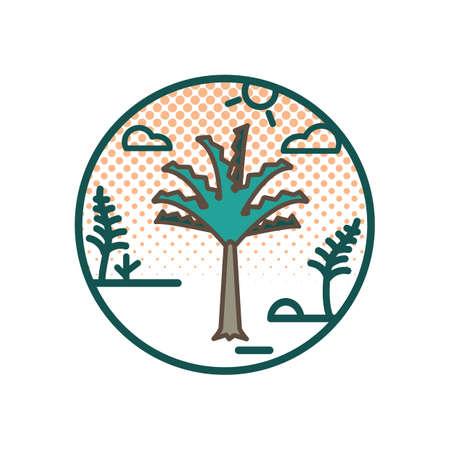 nikau palm tree