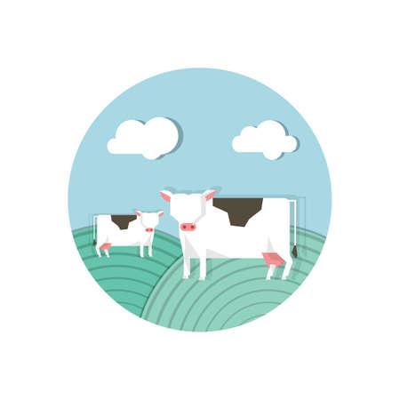 cows Zdjęcie Seryjne - 79186820