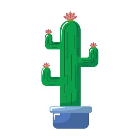 Kaktuspflanze Standard-Bild - 79217877