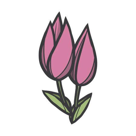 Tulips Stok Fotoğraf - 79217884