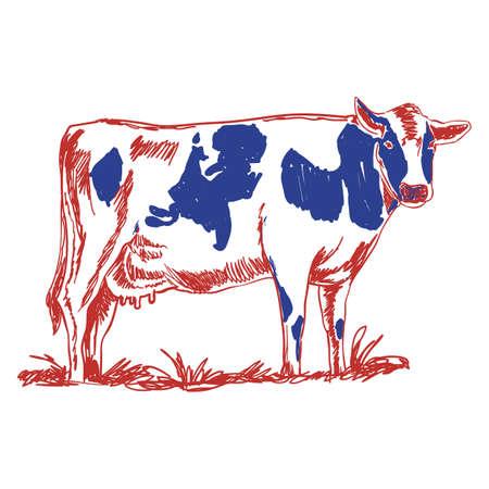 cow Imagens - 79188336