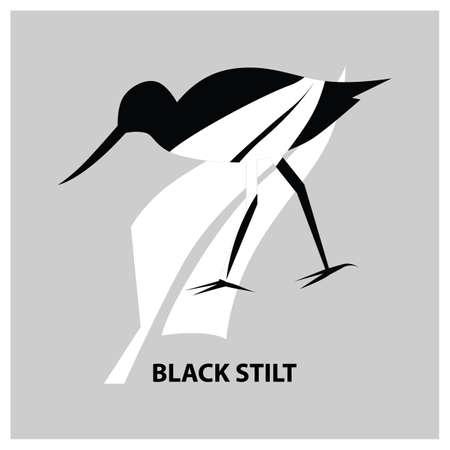 wading: black stilt