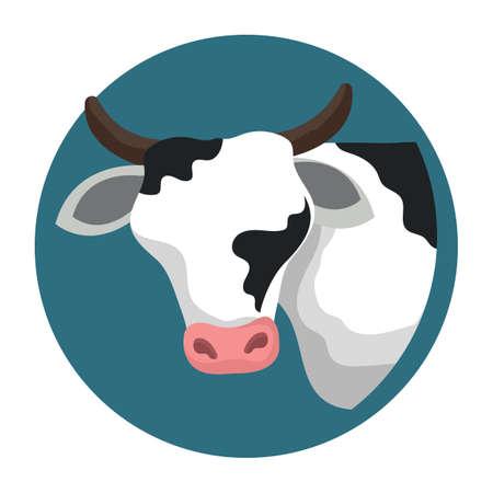 cow Reklamní fotografie - 79188993