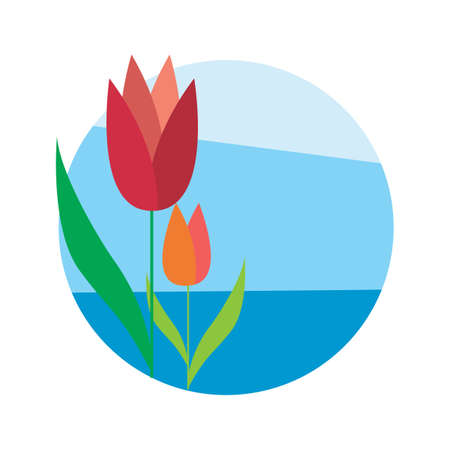 tulips Stok Fotoğraf - 79215811