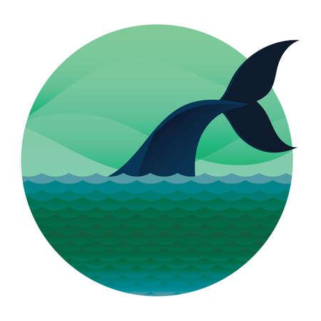 flippers: observación de ballenas en kaikoura