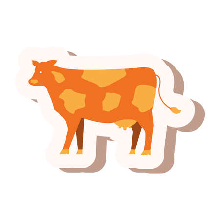 cow Reklamní fotografie - 79215995