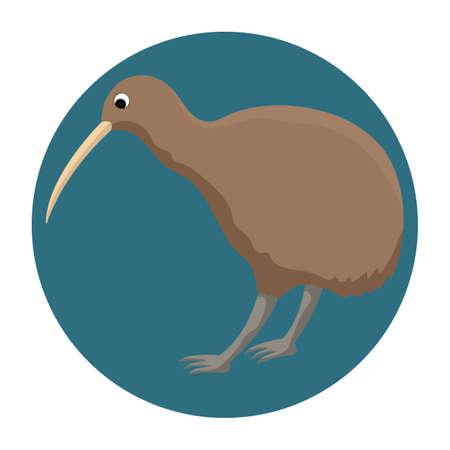 kiwi Фото со стока - 79216096