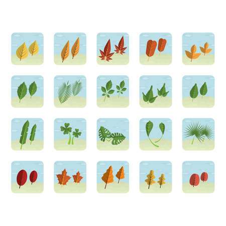 Collection of leaves Ilustrace