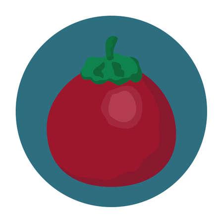 tomaat Stock Illustratie