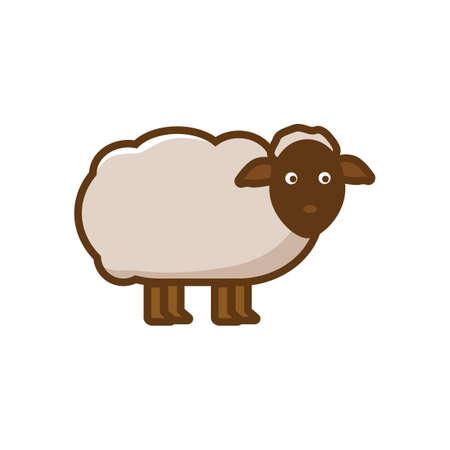 ruminant: sheep