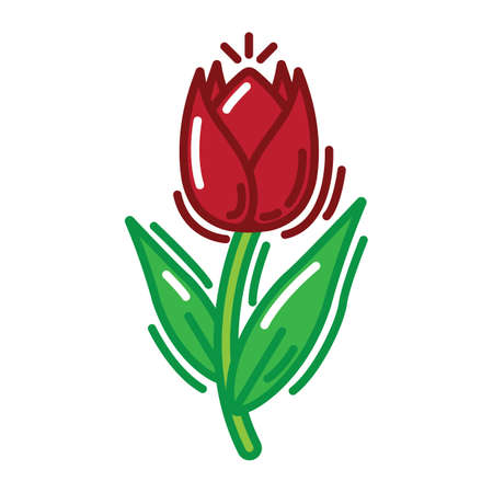 tulip Stok Fotoğraf - 79216762