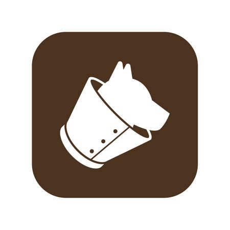 dog neck cone Reklamní fotografie - 79216880