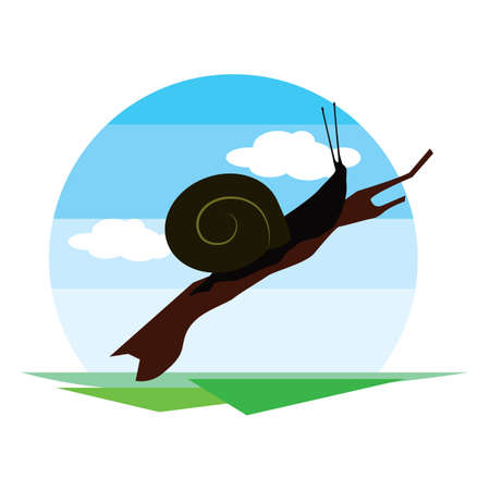nocturnal animal: snail Illustration